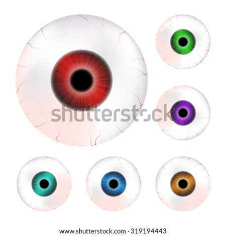 Image of realistic human eye ball with colorful pupil, iris. Vector illustration isolated on white background. - stock vector