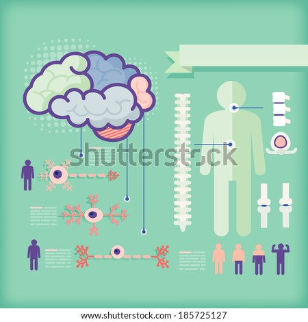 infographics of healthcare/nerve cell - stock vector