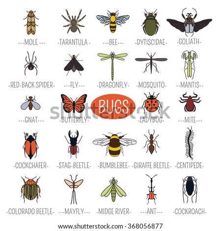 Insects icon flat style. 24 pieces in set. Color version. Vector illustration - stock vector