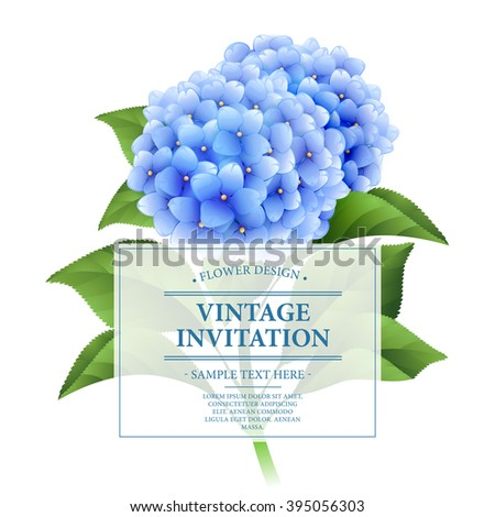 Invitation card. Blue hydrangea flowers. Vintage floral card.  Vector illustration EPS10 - stock vector