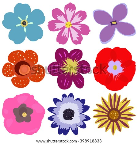 Isolated and colorful flower vector set. Flower icon collection. Hand drawn flower vectors. Group of single flowers. Flower icons eps. Many hand drawn flowers. Flower vector collection. - stock vector