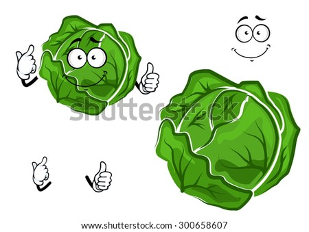 Isolated cartoon green cabbage vegetable with hands and face, for harvest or cooking concept design - stock vector