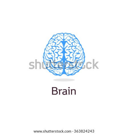Isolated colorful vector brains. Medical logo.Scientifical logotype. Neurobiology emblem. Intelligence image. Human brain illustration. Graphic cortex symbol.Cerebral hemispheres. Learning. - stock vector