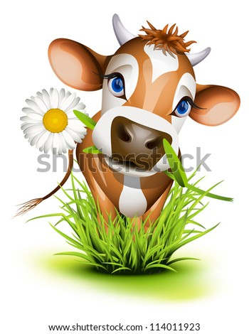 Jersey cow in green grass - stock vector