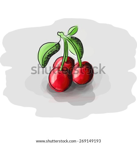 Juicy fruits - Sweet red cherries. 