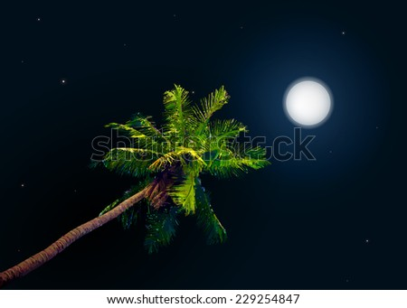 jungle at night. Vector background with moon and palm - stock vector