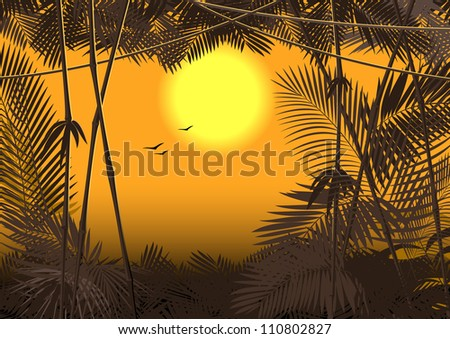 jungle forest. Vector 3 - stock vector