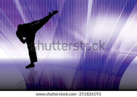 Karate illustration, vector  - stock vector
