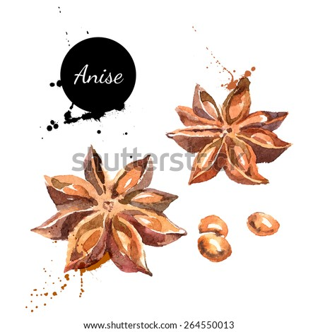 Kitchen herbs and spices banner. Vector illustration. Watercolor 