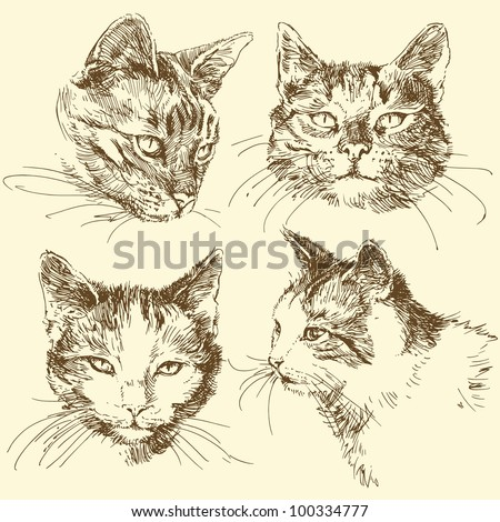 kitten - hand drawn collection - stock vector