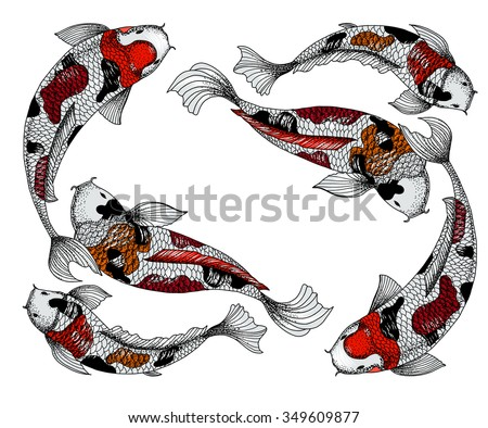 Koi stock vectors vector clip art shutterstock for Koi fish vector