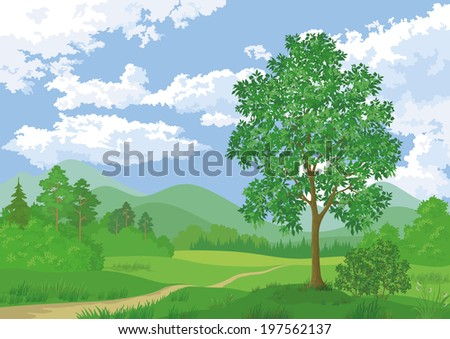 Landscape, summer green forest, maple tree and blue cloudy sky. Vector - stock vector