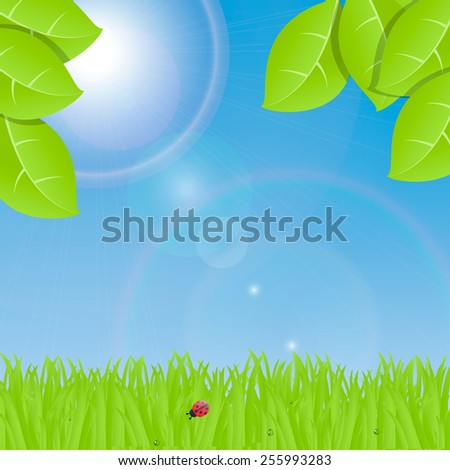 Landscape with green grass, blue sky, trees leaves and bright sun, vector illustration  - stock vector