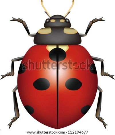 Layered Vector Illustration Of Ladybug. - stock vector