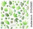 leaf big set - stock vector