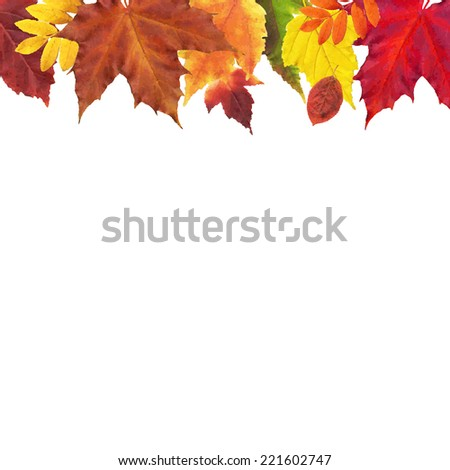 Leaves Border, Vector Illustration - stock vector