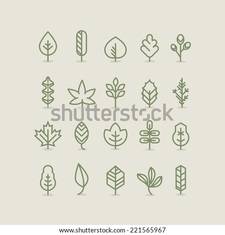 Leaves collection, outline, linear, line - stock vector