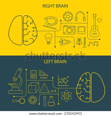 left and right brain functions concept - stock vector