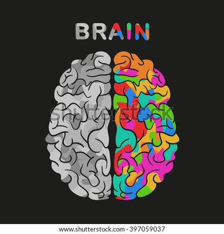 left and right brain hemisphere. Vector concept illustration. - stock vector