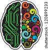 Left and right part of human brain - stock vector