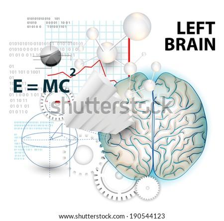 Left brain functions - stock vector