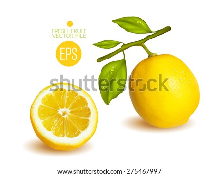 Lemons, cut in half. Citrus isolated on white background beautiful fresh fruit. Vector realistic art illustration for advertising packaging carton bottle banner wallpaper. Color yellow green. Colorful - stock vector