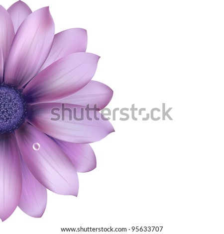 Lilac Flower, Isolated On White Background, Vector Illustration - stock vector