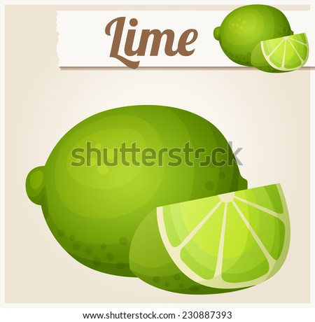 Lime. Detailed Vector Icon. Series of food and drink and ingredients for cooking. - stock vector