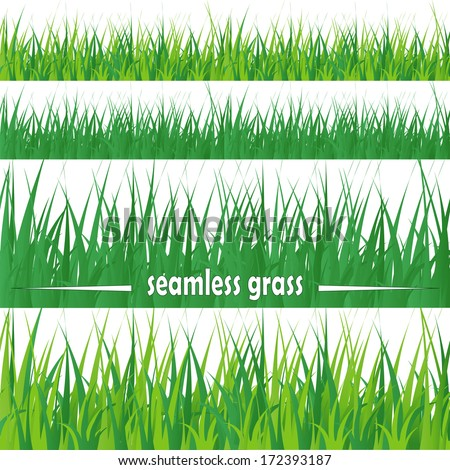 Line seamless and set of fresh green grass, element for design, isolated on white background. Vector - stock vector