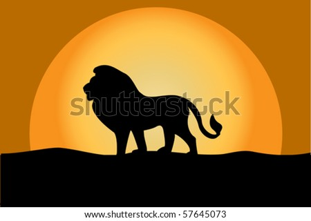 Lion at twilight - stock vector