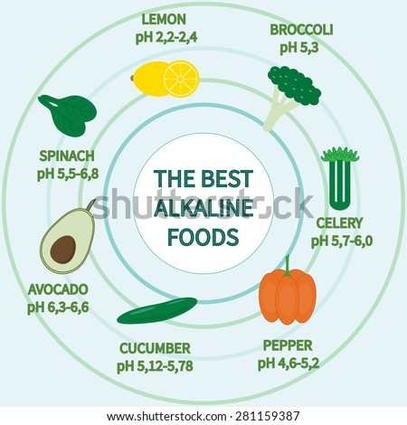 List of Alkaline Foods . Alkaline foods are foods that raise the the amount of oxygen that your blood takes in. - stock vector
