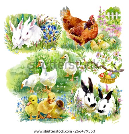Little fluffy cute watercolor ducklings, chickens and hares with eggs pattern on white background vector illustration - stock vector