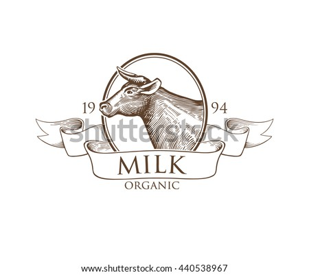 Logo Cow in a Cameo with Ribbon. Vector illustration in Vintage Engraving Style. Grunge label for the farm, rural, agricultural organizations, milk product. Sticker depicting cow. Isolated.  - stock vector
