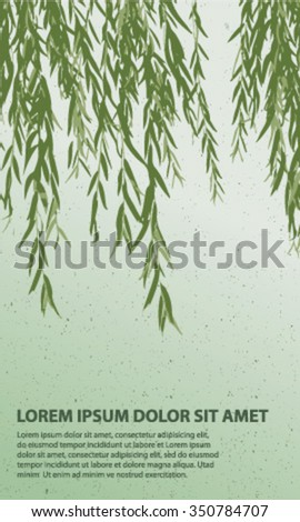 long drooping branches of a willow tree background - stock vector