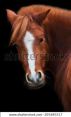 Look back of a grace red horse with white stripe on the face, isolated on black background. Beautiful mare, looking straight into the camera. Amazing vector image in oil painting style. - stock vector