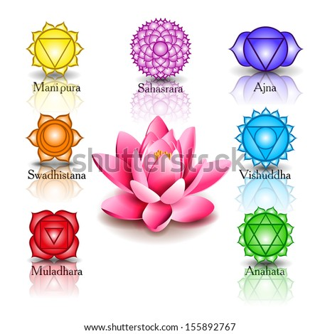 lotus and seven chakras - stock vector
