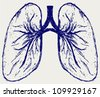 Lungs person. Sketch - stock vector