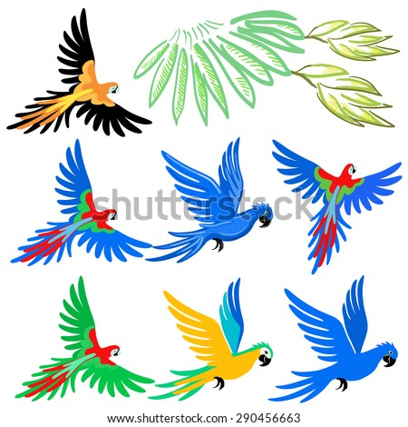 Macaw parrot pattern set, vector illustration isolated on white background  - stock vector