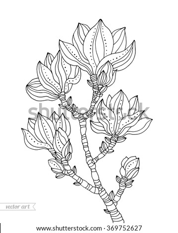 Magnolia blossom, tree branch flowers with dot and line pattern. Vector artwork. Coloring book page for adult. Love bohemia concept for wedding invitation, card, ticket, branding, boutique logo, label - stock vector
