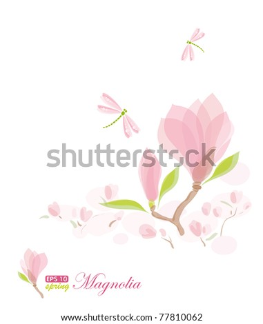 Magnolia branch and dragonfly, nature background, eps-10 - stock vector