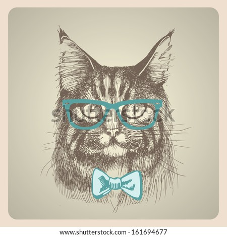 Maine coon cat portrait. Hand drawn vector illustration. Can be used separately from your design. - stock vector