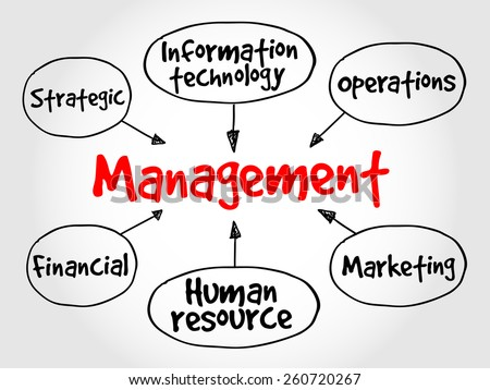 Management mind map business strategy concept - stock vector
