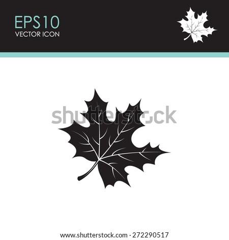 Maple Leaf vector icon. - stock vector