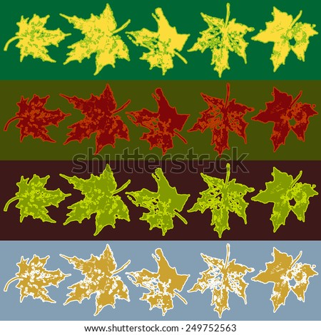 Maple tree leafs for all seasons - stock vector