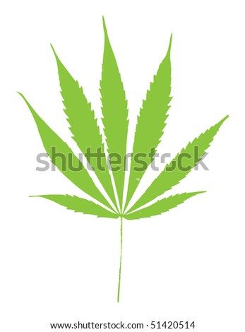 marihuana leaf on white background - stock vector