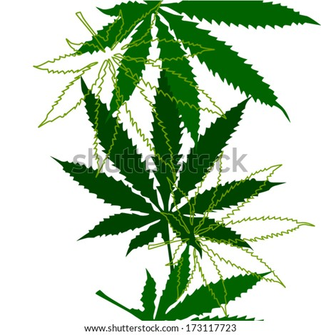 Marijuana leaves seamless background. Vector - stock vector