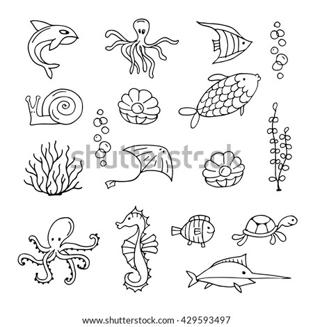 Marine life, collection of sketches for your design - stock vector