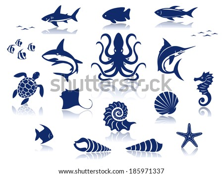 Marine life icon set. Isolated against a white background with reflections - stock vector
