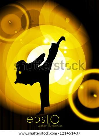 Martial arts vector - stock vector