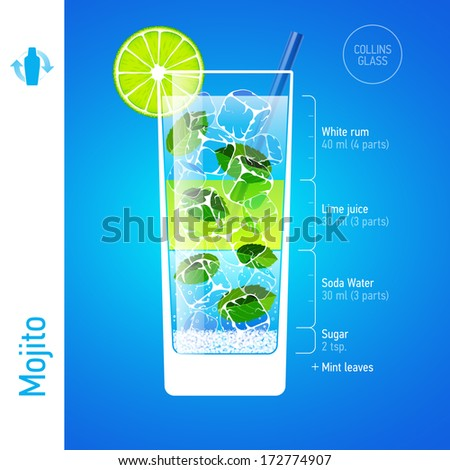 Mojito cocktail ingredients. Vector. - stock vector